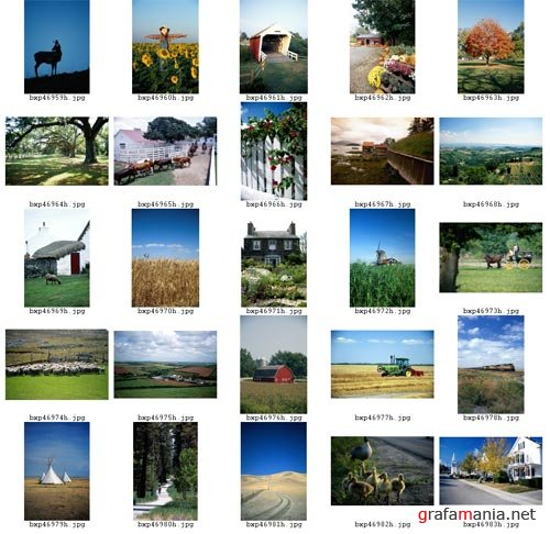 BrandX Picture X176 (Countrysides)