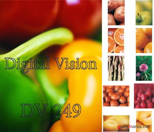 Digital Vision DV249