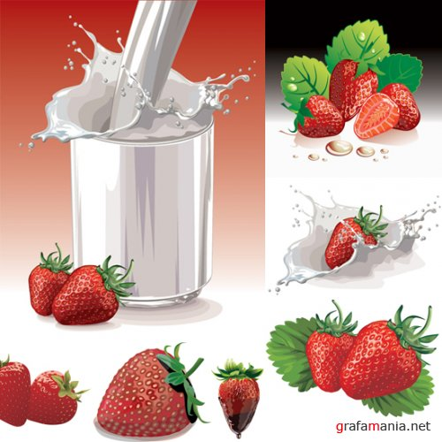 ShutterStock - Strawberry Vector