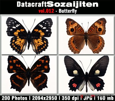 Datacraft Vol.012 - Butterfly