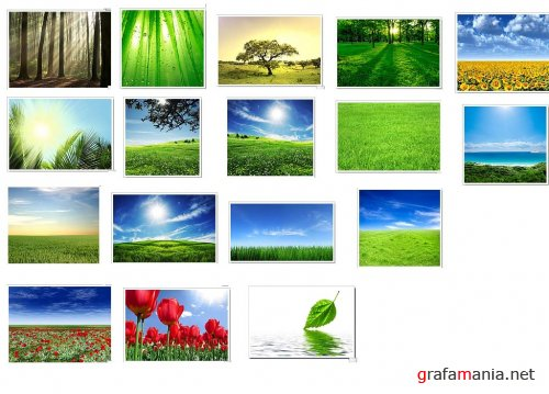 ShutterStock Images - Nature
