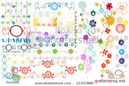 Colorful Floral Elements Background