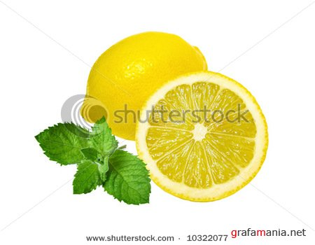 Lemons and mint isolated on white background & Apricot; objects on white background