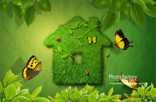 Template for PhotoShop - Home Green