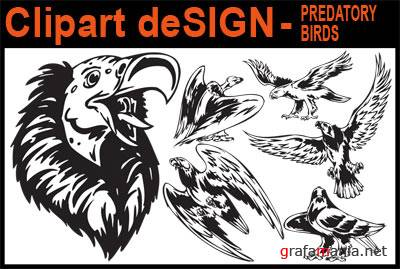 Clipart deSIGN - Predatory Birds