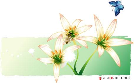 Vector design Flowers and insects.