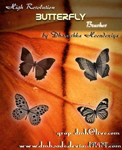 Brushes for PhotoShop - Butterfly