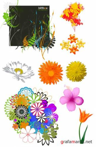 Flowers vector mix