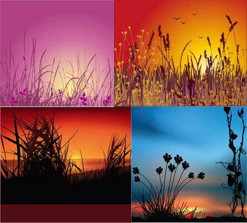 Sunset backgrounds