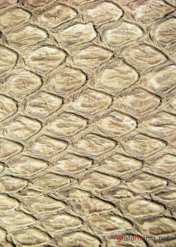 �������� - Leather Texture