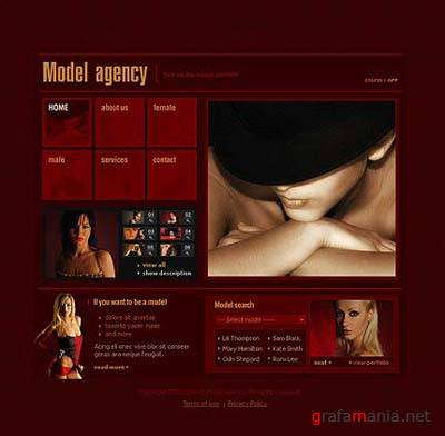TM 8991: Model Agency Web Template