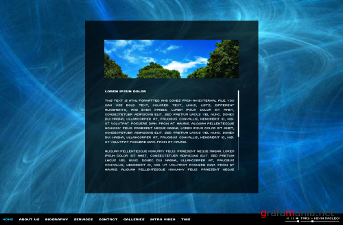 Organic Template Image Video Gallery Portfolio