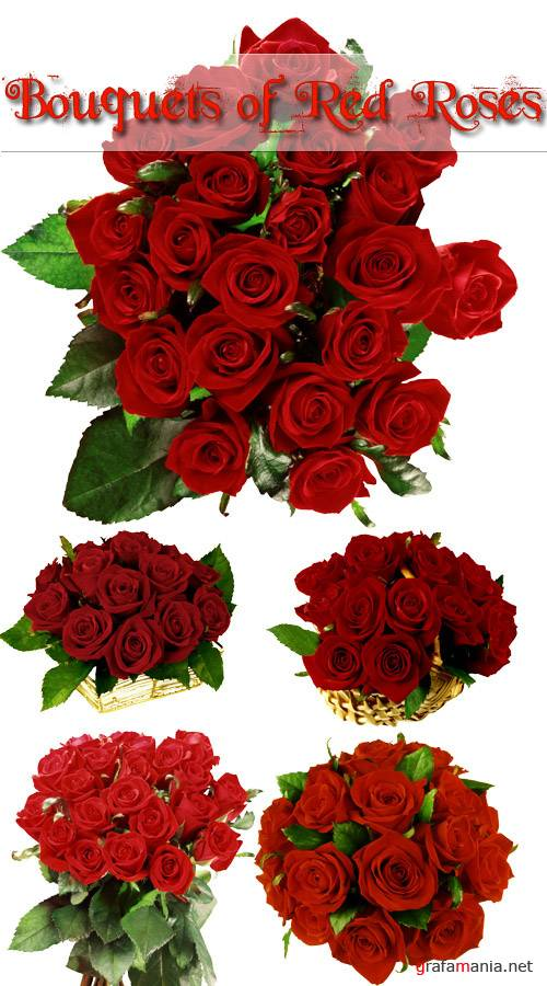 Клипарт - Bouquets of Red Roses