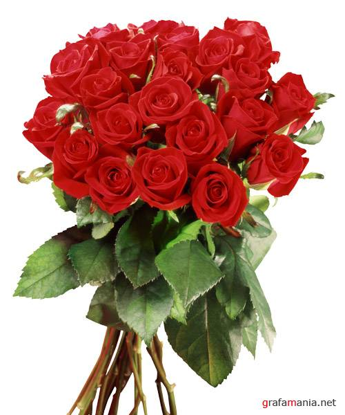 ������� - Bouquets of Red Roses