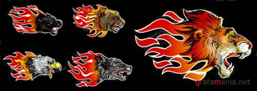 Fiery animals