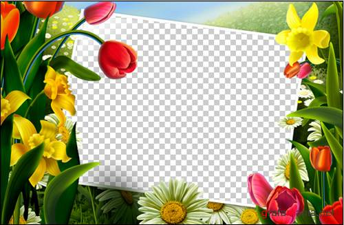 Flower Frame For Photoshop