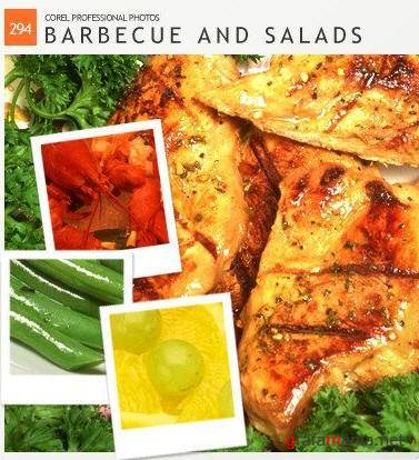 Corel Professional Photos  Vol. 294 - Barbecue and Salads
