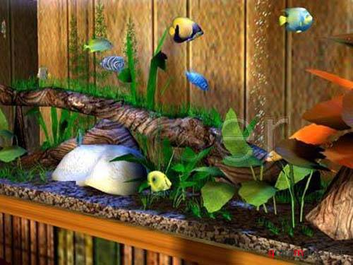3D Bungalow Aquarium Screensaver 2.0