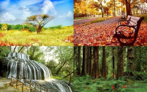 Nature WideScreen Wallpapers #18