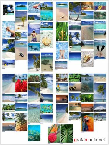 Brand X Pictures X227 Postcards from Paradise