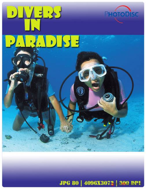 Divers In Paradise