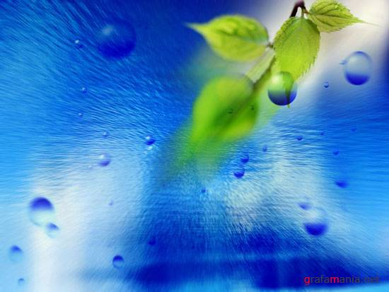 Wallpapers - Greenery. Water & Air Eco Images