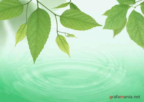 Greenery, Water, Air - Eco images 2