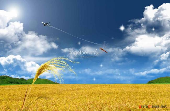 Wheat Field PSD