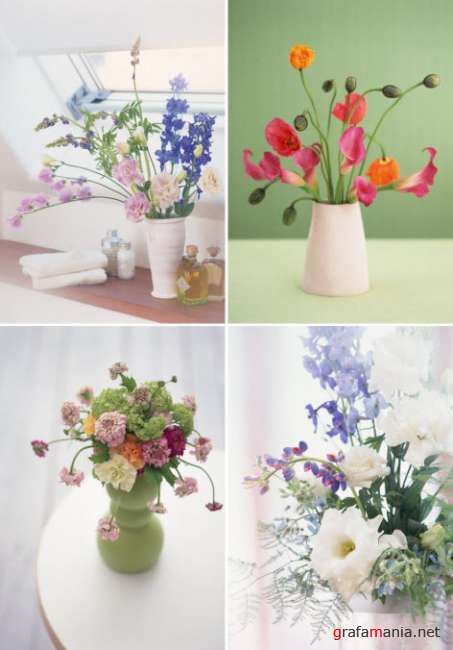 ������� � ����� � ��������� 2   Klipart � Flowerses in interior 2