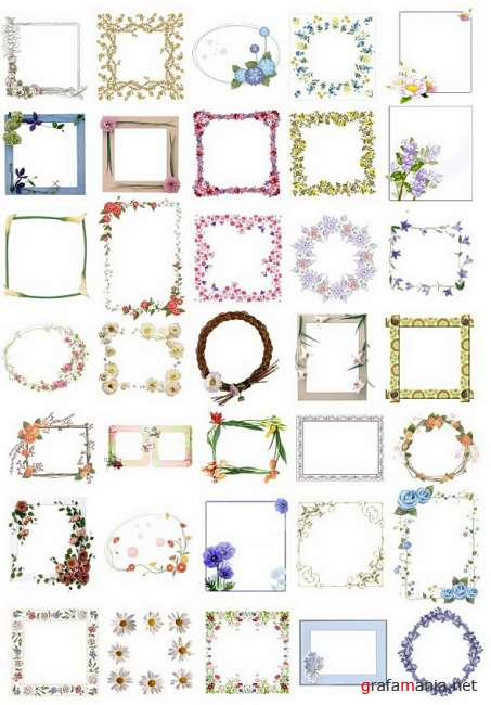 Frames with flowers PNG