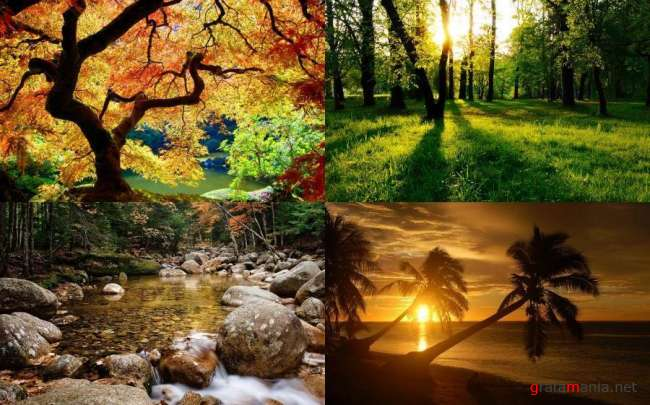 Nature WideScreen Wallpapers #39