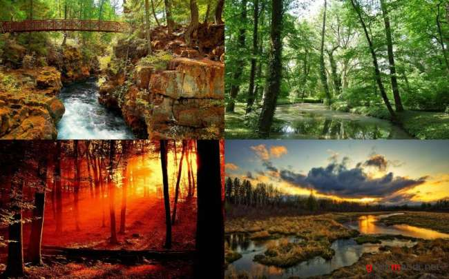 Nature WideScreen Wallpapers #40
