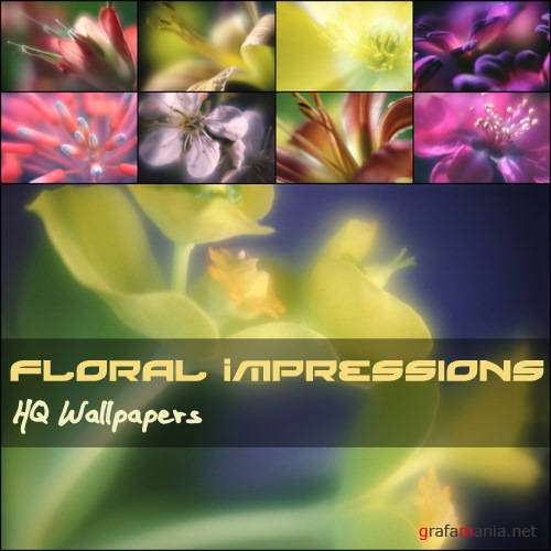 Floral Impressions HQ Wallpapers