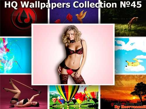 HQ Wallpapers Collection №45