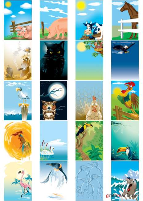 Animals Backgrounds