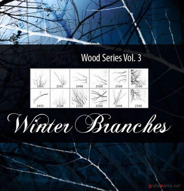 Winter Branches Brushes