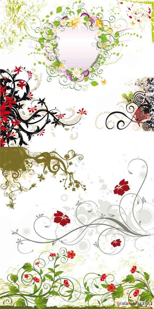 ��������� ������� - Floral Illustration