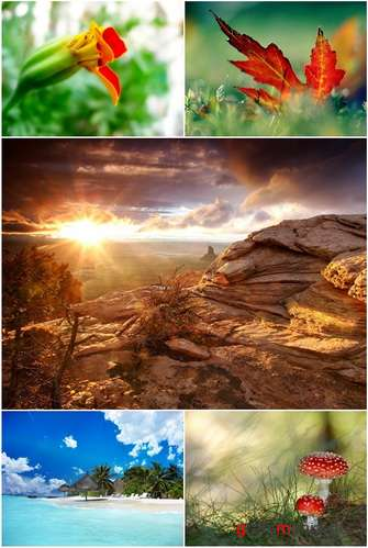 Wallpapers - Top 100 Nature and Landscape Pack
