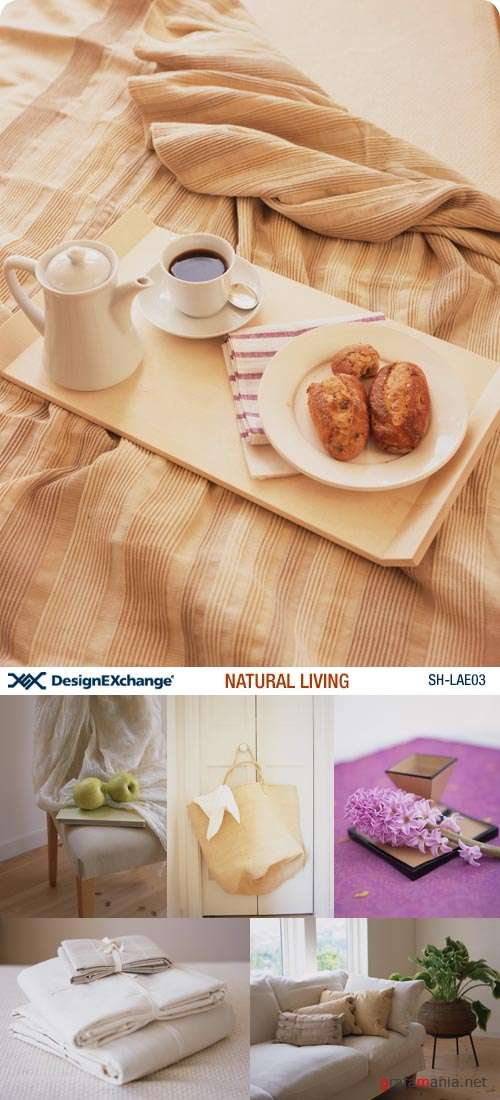 Design EXchange | SH-LAE03 | Natural Living