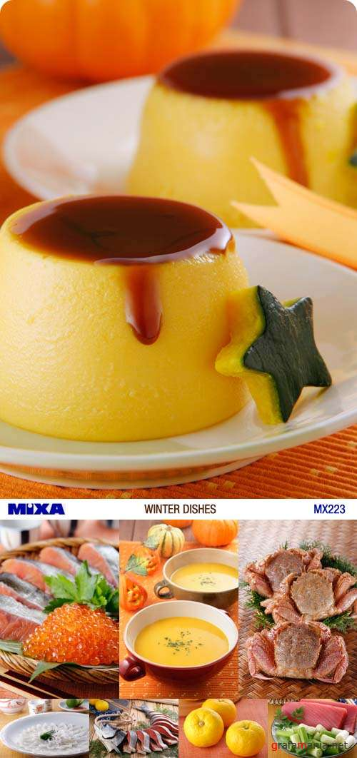Mixa | MX-223 | Winter Dishes