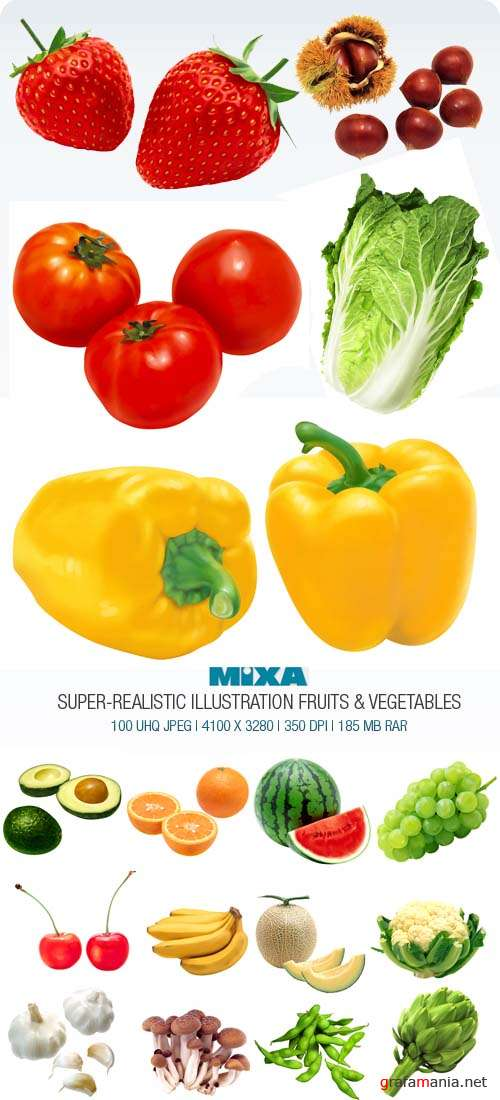 Mixa | MX-220 | Super Realistic Illustration Fruits & Vegetables