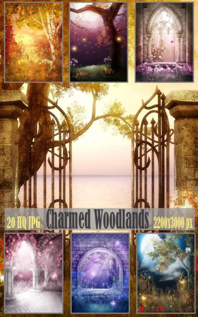 Charmed Woodlands