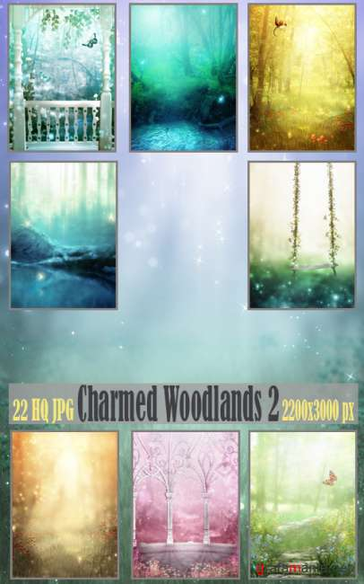 Charmed Woodlands 2
