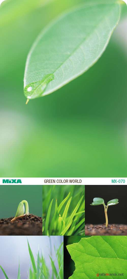 Mixa | MX-070 | Green Color World