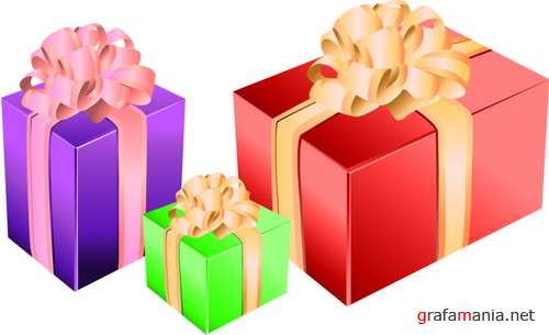 Vector - Gift Box Pack