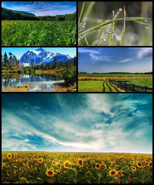 Beautiful Nature Wallpapers Collection 2009