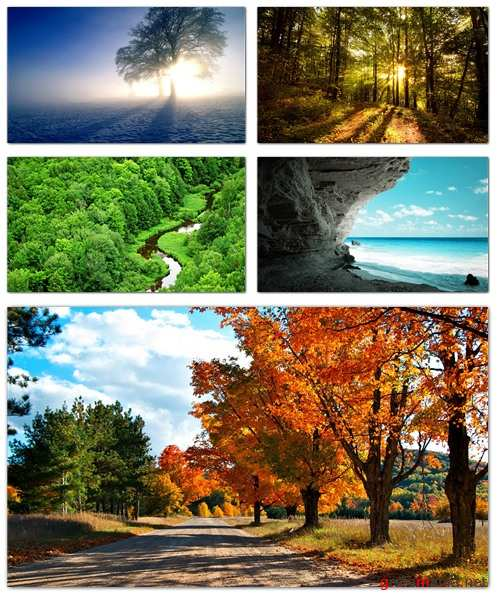 Nature Wallpapers (part 61)