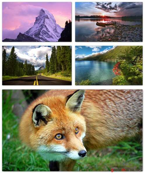 Nature Wallpapers (part 65)