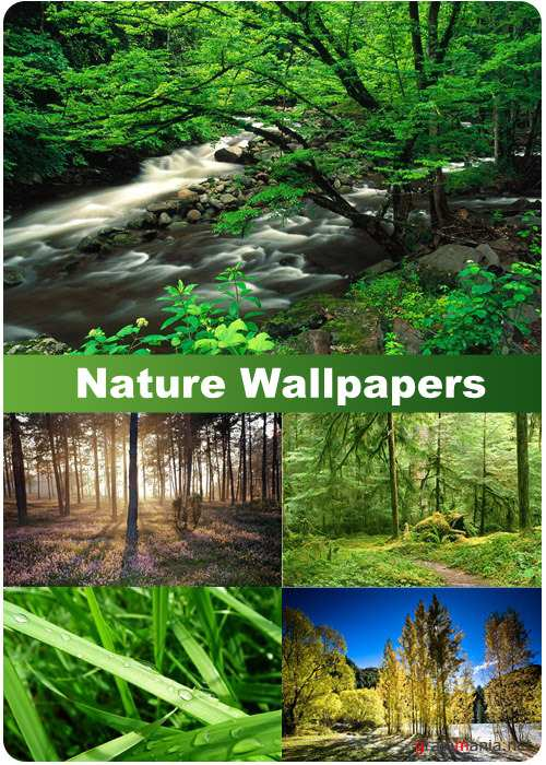 Nature Wallpapers (part 77)