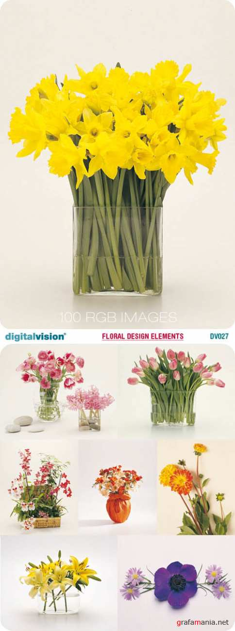 Digital Vision | DV027 | Floral Design Elements